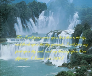 The living water is Christ poured out for your salvation (Ps 22:14).